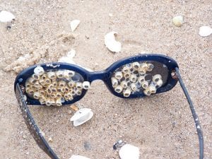 How not to lose your fishing sunglasses